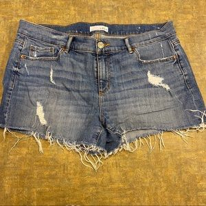 Ann Taylor LOFT Distressed Jean Shorts